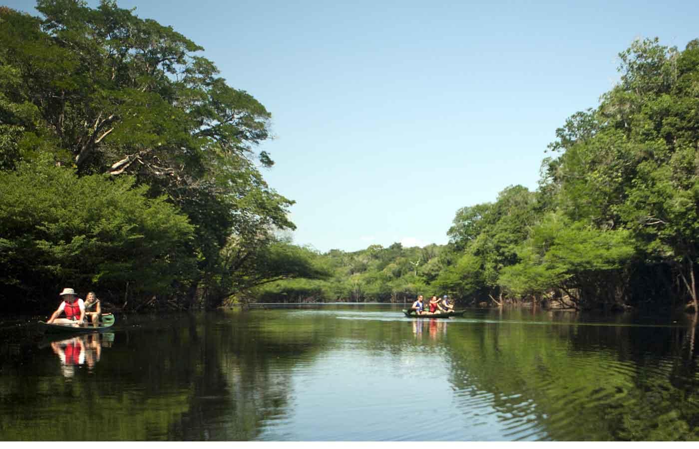 Anavilhanas Amazon Lodge - Luxury Amazon Lodge in Brazil
