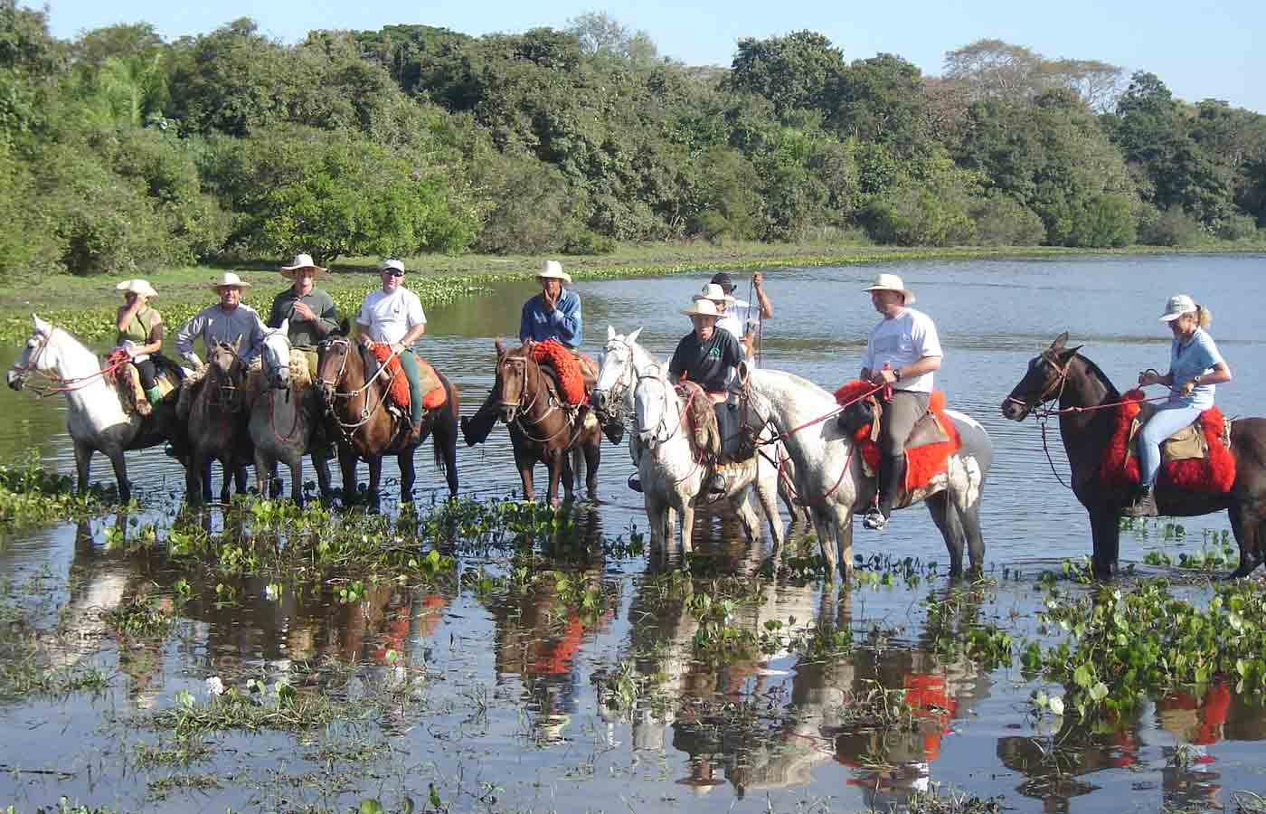 Barra Mansa Lodge - Holidays to the Pantanal, Brazil