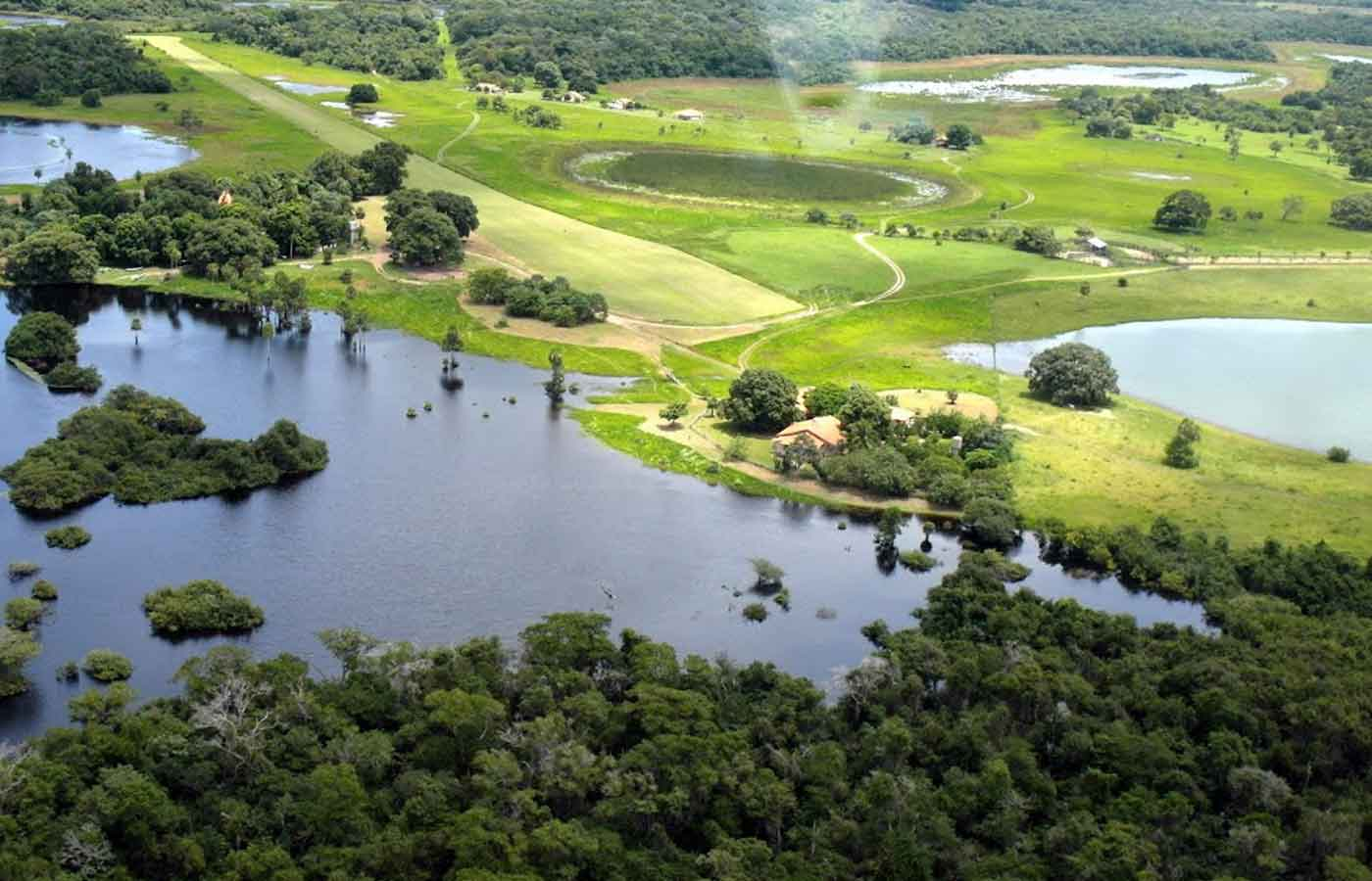 Fazenda Barranco Alto - Holidays to the Pantanal, Brazil