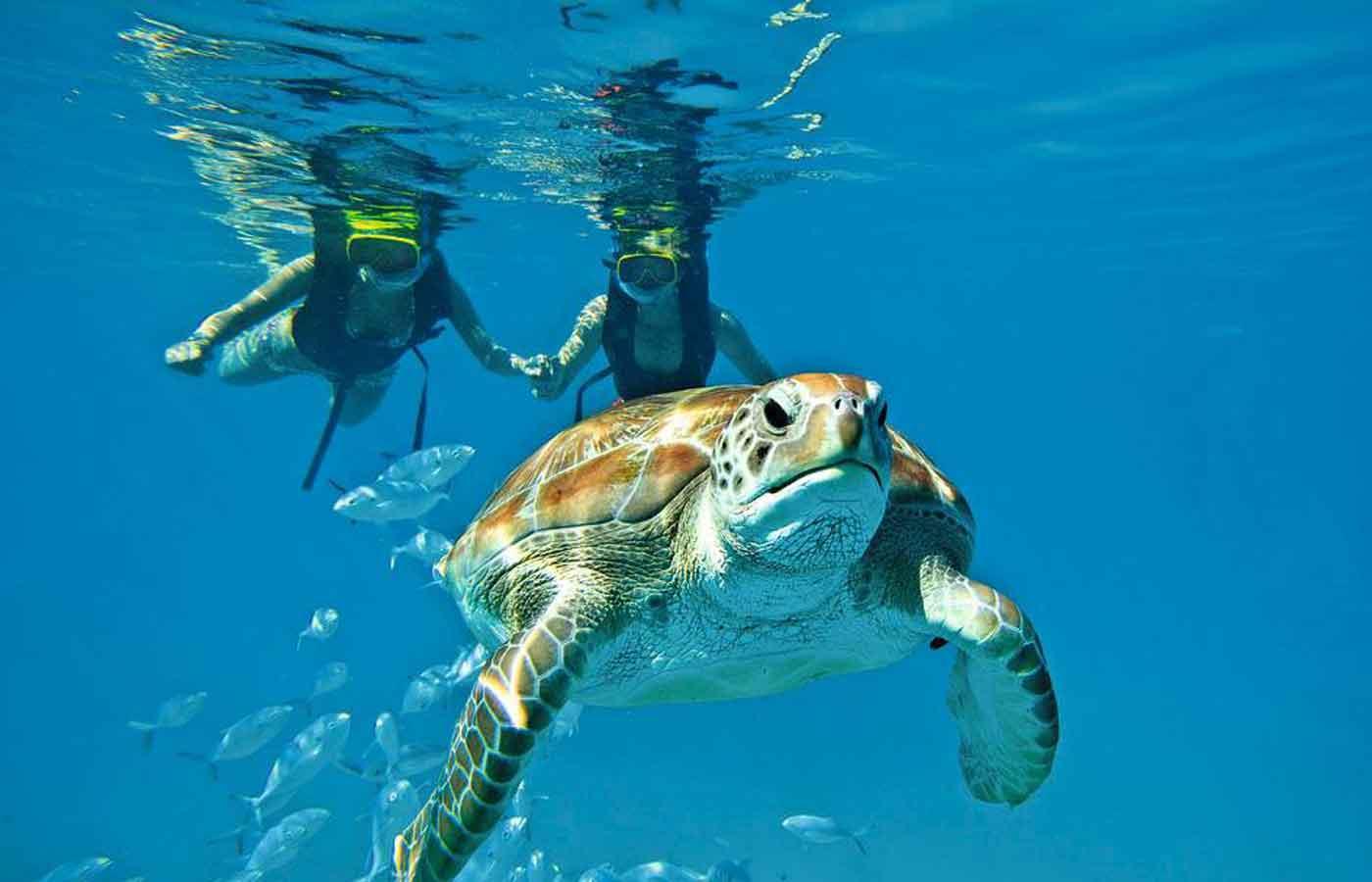 Hopkins Bay Resort, Belize, luxury Belize, tailor-made holidays to Belize, Belize holidays,