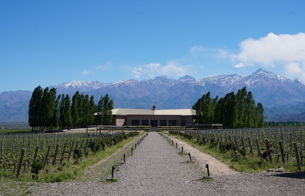 Salentein is one of many exceptional bodegas you can visit in and around Mendoza.