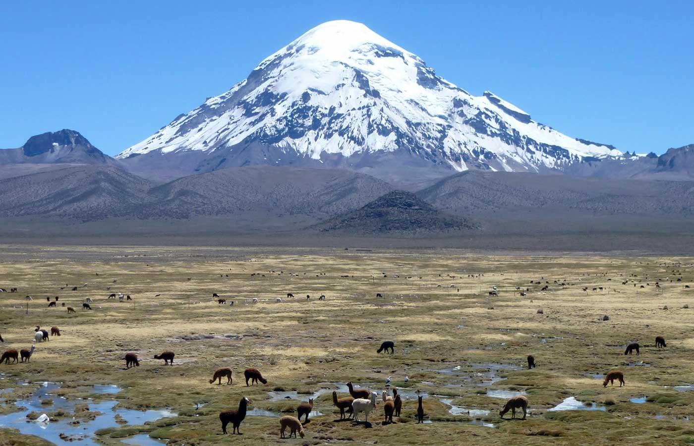 Sajama National Park, Bolivia