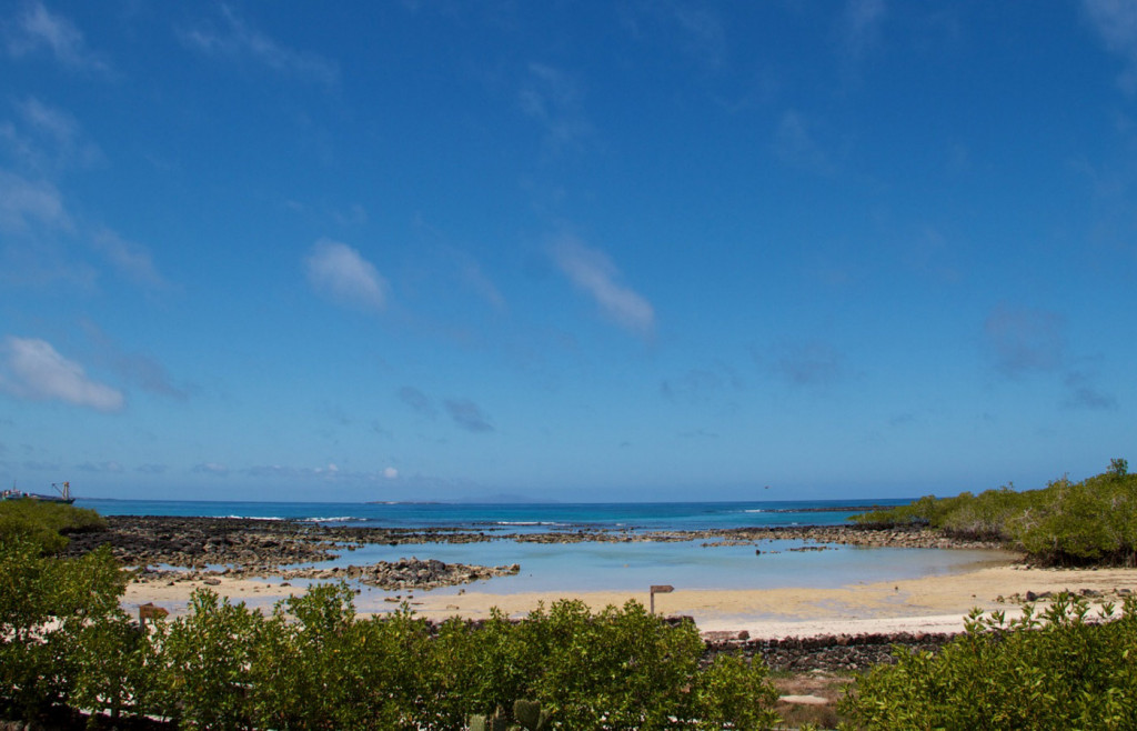 View from Finch Bay Hotel in the Galapagos Islands