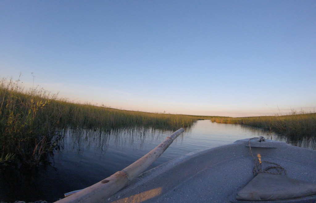 Canoeing in the Ibera Wetlands