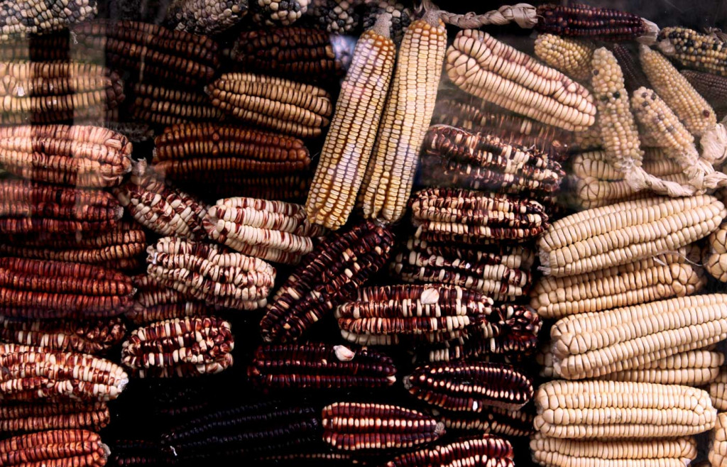 The Andean regions are home to many varieties of corn which is a key ingredient in the local cuisine