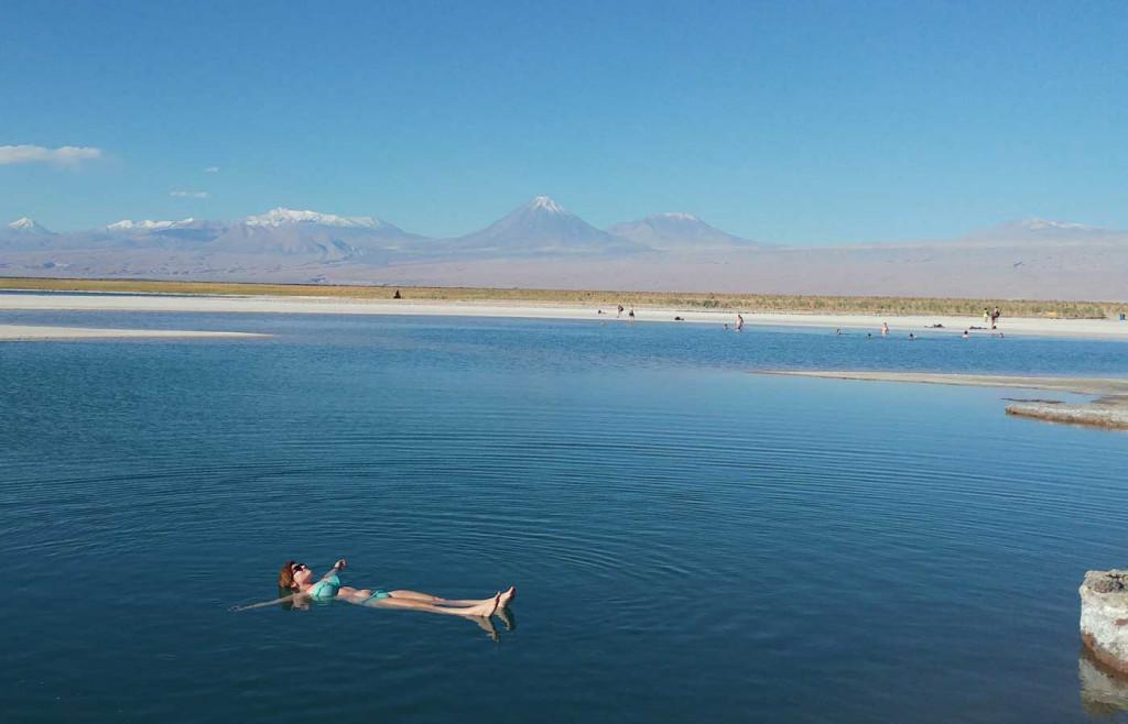 Cejar Lagoon in the Atacama Desert, Chile