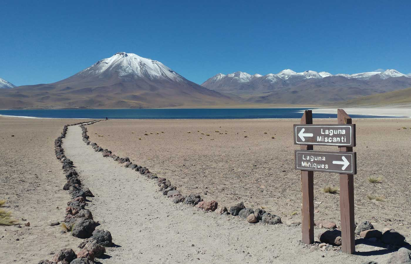 Miscanti and Miniques Lagoons in northern Chile