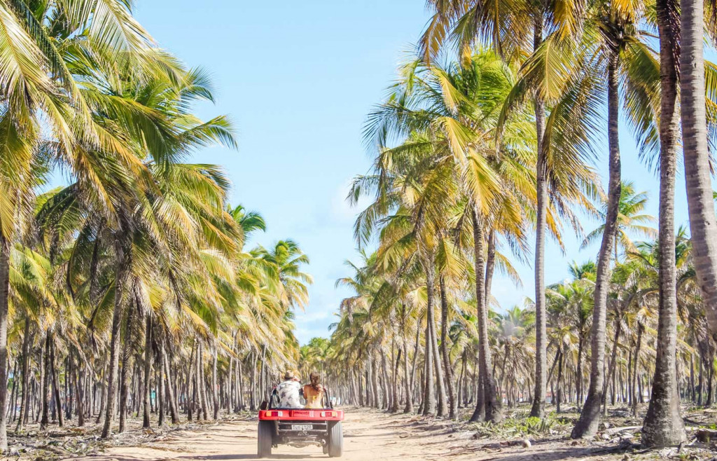Maracaipe Beach Buggy rides - northern Brazil