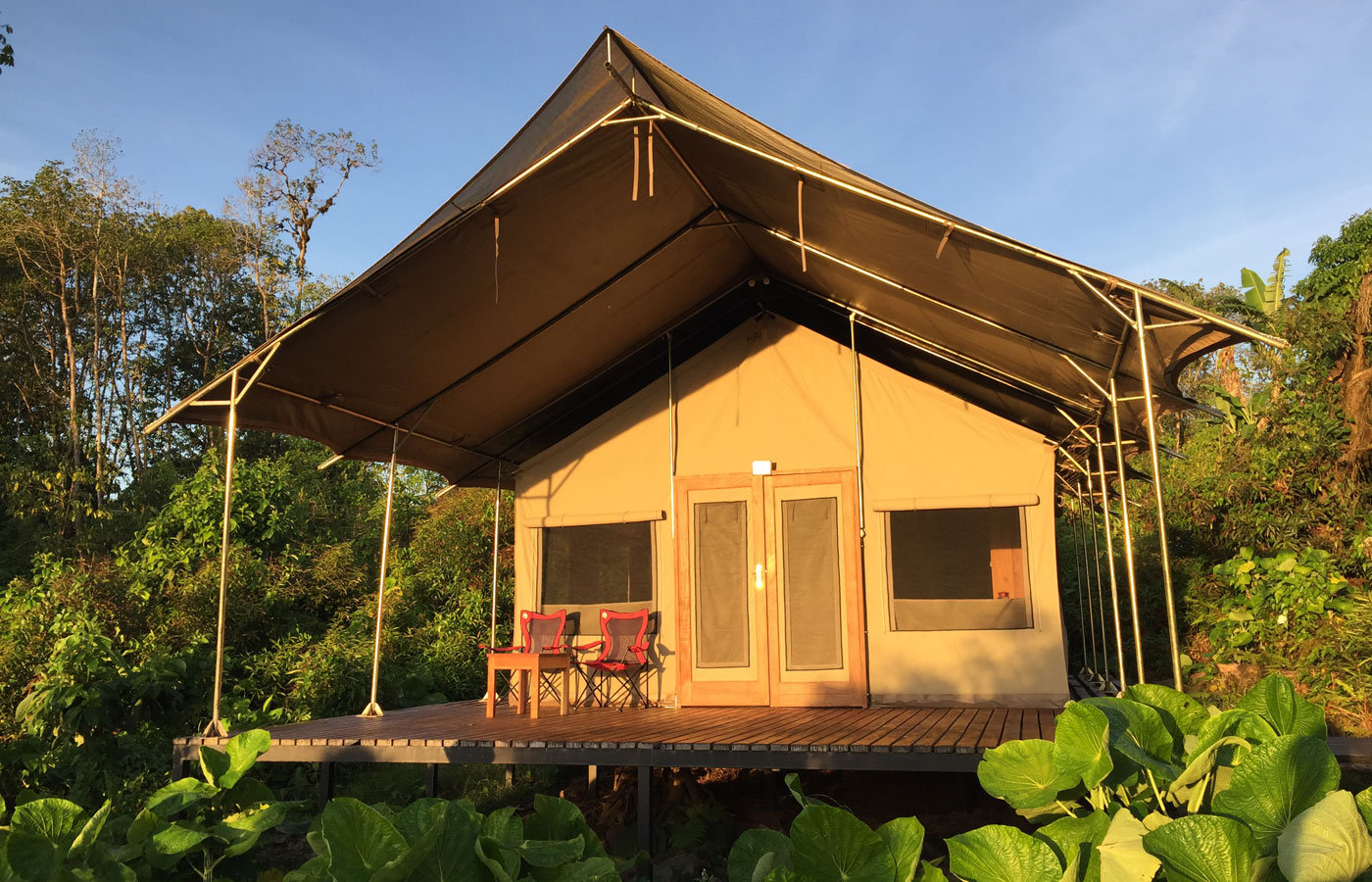 Tented suite at Scalesia Lodge